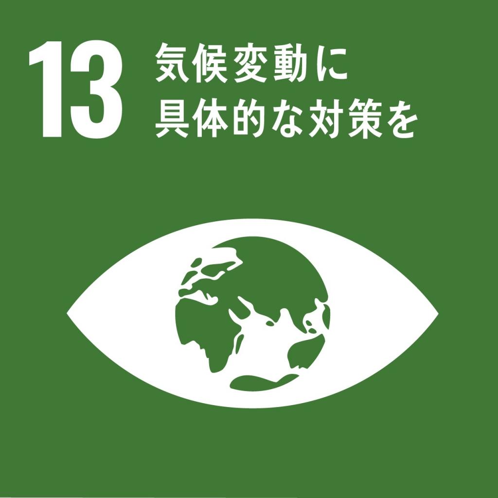 SDGs気候変動及びその影響を軽減するための緊急対策を講じる 画像